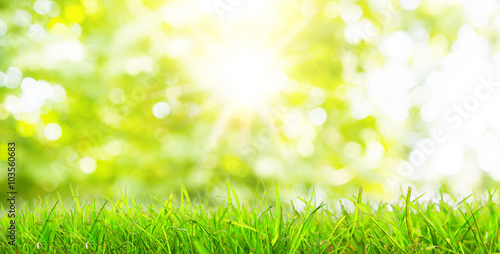 Keuken foto achterwand Lente green grass background