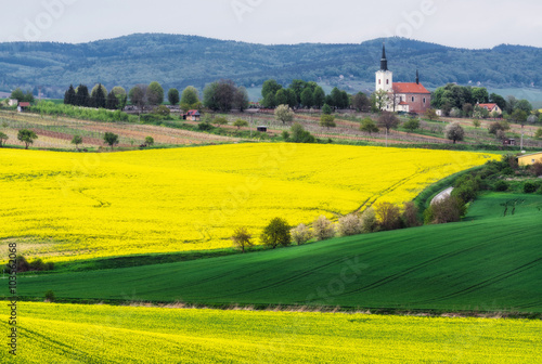 Poster Jaune Czech Republic. South Moravia. Rapeseed field near the village of Kostelec