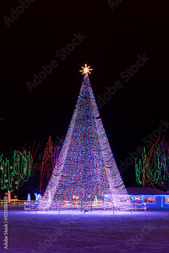 Large Outdoor Christmas Tree Of Lights With A Golden Star At The Top