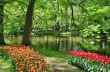 Fototapeta Kwiaty - Park