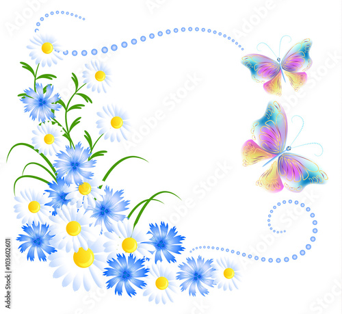 Flowers ornament and butterflies isolated on white background - 103602601