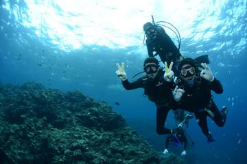 Okinawa ronjenje