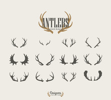 Premium Antler Illustrations