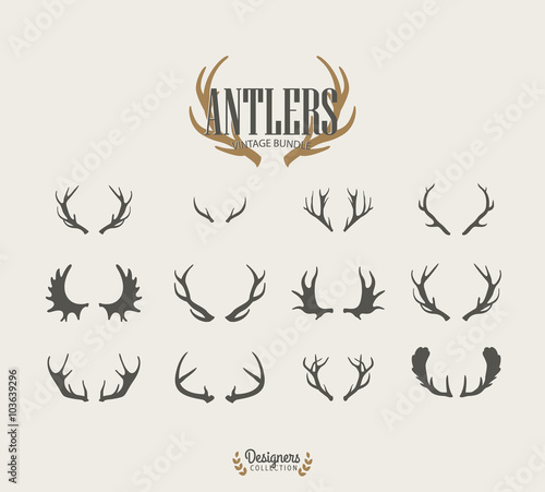 Foto Premium Antler illustrations