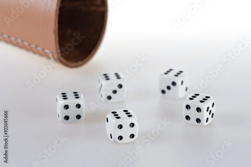 Five dices and a dice cup Poster
