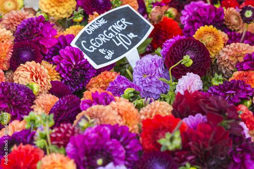Colorful bouquets of dahlias flowers at market in Copenhagen, De Poster