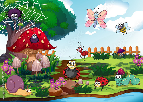 Poster Magic world Bugs living by the river