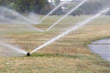 Sprinkler Watering In Golf Cou...