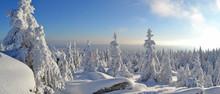 Winter Im Fichtelgebirge Mit B...