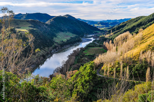 Printed kitchen splashbacks River River and forest in Whanganui National Park, New Zealand