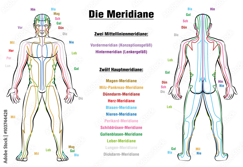 Meridian System Description Chart Germanmeridian System Chart