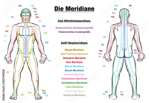 Meridian System Description Chart Germanmeridian System Chart