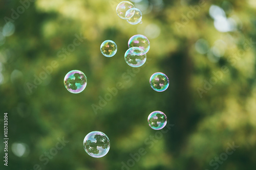 Recess Fitting India Soap bubbles outdoor