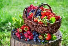 Fresh Berry Fruits In Basket