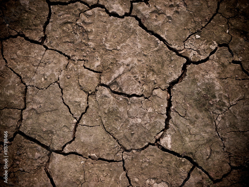 фотография  Close up of the cracked ground, dry soil texture