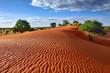 canvas print picture - Kalahari desert, Namibia