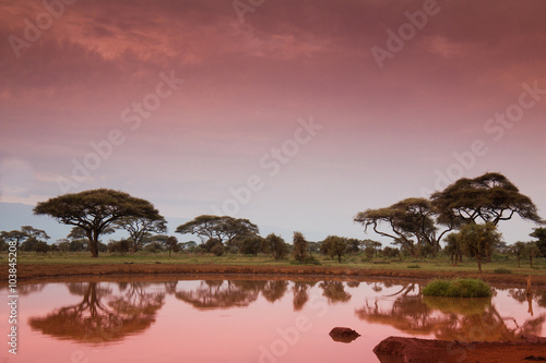 fototapeta na lodówkę African landscape before sunrise