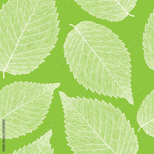 leaf skeleton pattern - 103860802