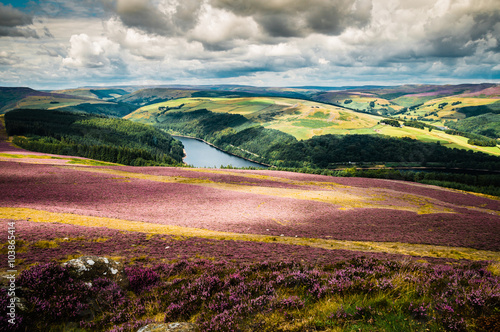 Aluminium Prints Salmon The great view of Ladybower Reservoir from Win Hill in the Peak District.