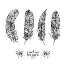 Beautiful Feathers Set. Nice Collection For Prints And Decoration.