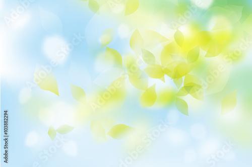 Printed kitchen splashbacks Light blue 新緑 ふわふわ 青