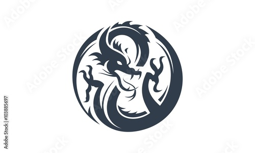 Fotografie, Tablou  dragon logo vector