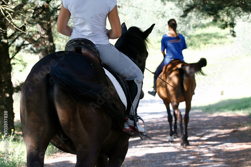 Stickers pour portes Equitation horse ride - country