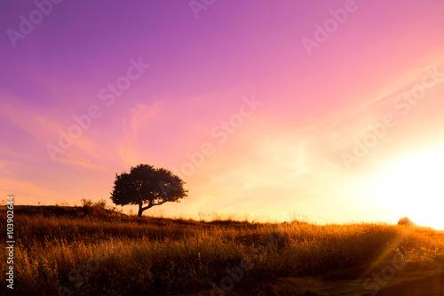 tramonto-poetico
