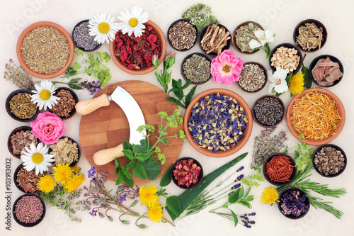 Fotografía  Natural Flower and Herb Medicine