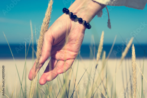 Foto  Woman's hand sliding through dune grass on sunny day