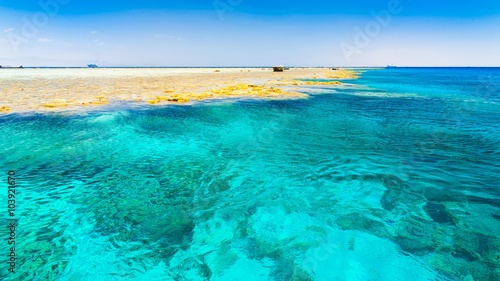 Poster Turquoise red sea day