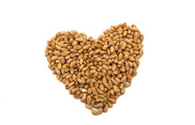 Heart Of Wheat Grains Isolated