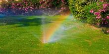 Watering  Sprinkler  Lawn