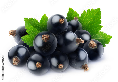 Photo Isolated pile of black currants