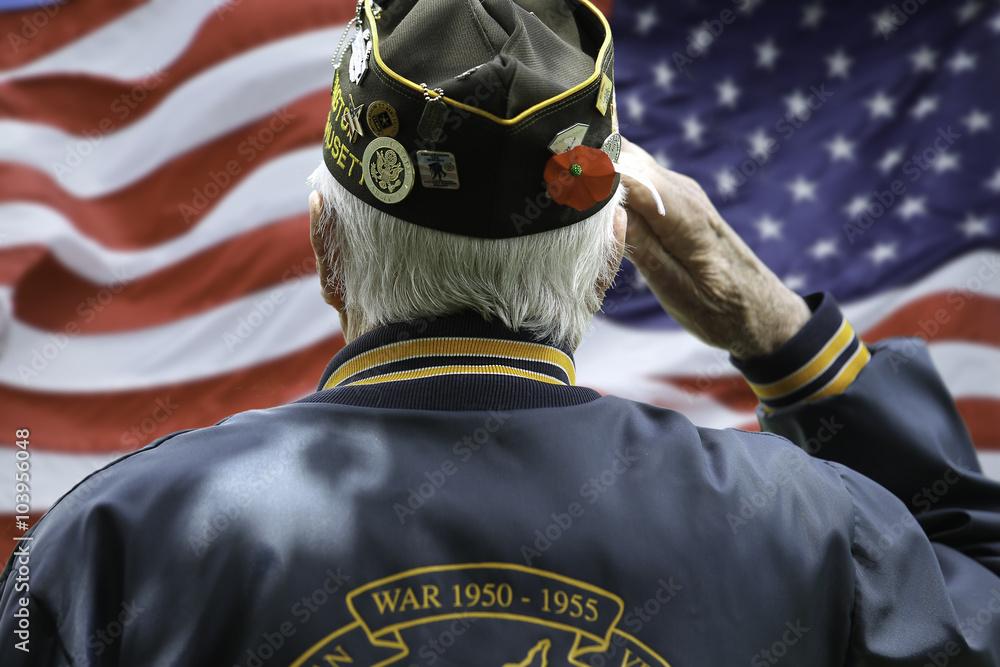 Fototapeta Veteran's Saluting
