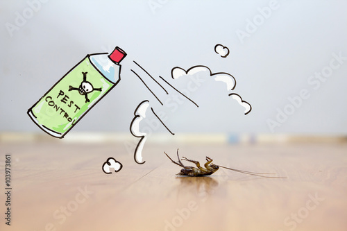 Dead cockroach on floor , pest control concept