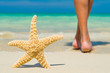 feet on the wet sand with a starfish.