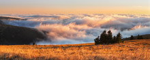 Autumn Temperature Inversion I...