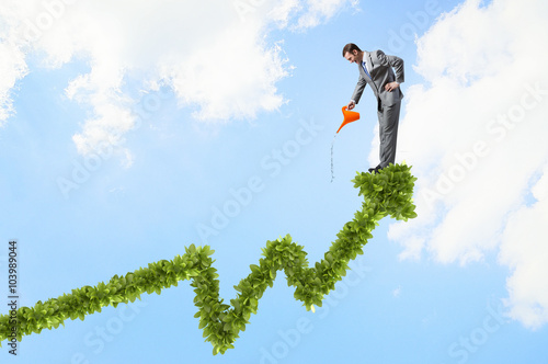 Fotografie, Obraz  Make your income grow