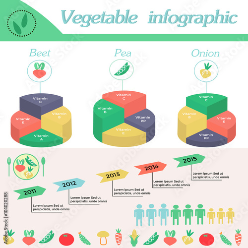Healthy Lifestyle Infographic Vitamines In Beet Peaonion And