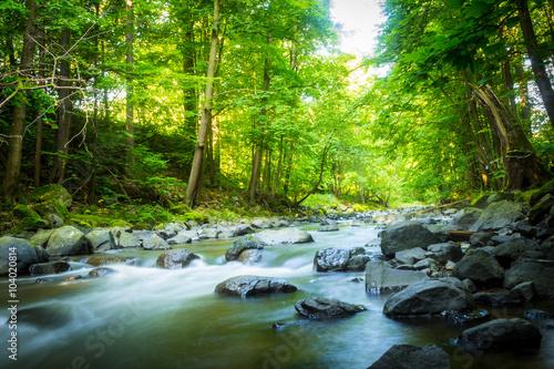 piekny-marzycielski-gorski-strumien-w-lesie