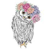 Cute owl in a wreath of flowers. Bird painted in the vector. - 104022813
