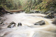 Fluid Motion White Water Flowing In Riverbed At Pacific Northwest Forest