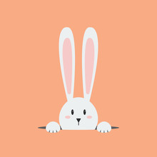 White Easter Rabbit