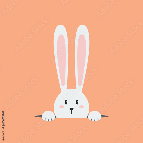 Fotografia White easter rabbit