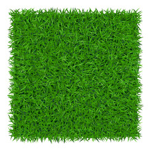 Green Grass Background. Lawn Nature. Abstract Field Texture. Symbol Of Summer, Plant, Eco And Natural, Growth Or Fresh. Design For Card, Banner. Meadow Template For Print Products. Vector Illustration