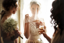 Happy Stylish Gorgeous Blonde Bride With Bridesmaids On The Bac