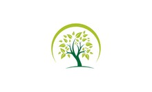 Circle Green Tree Logo