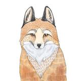 Fox sketch. Watercolor illustration. - 104072472