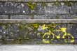Señal de bicicleta pintada sobre muro